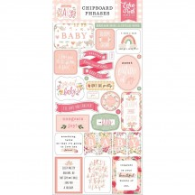 Echo Park Welcome Baby Girl Self Adhesive Chipboard Phrases Stickers WBG233022