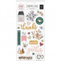 Pink Paislee Auburn Lane Puffy Stickers 310681