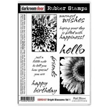 Darkroom Door Cling Foam Mounted Rubber Stamps - Bright Blossoms Vol 1 DDRS107
