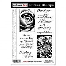 Darkroom Door Cling Foam Mounted Rubber Stamps - Bright Blossoms Vol 2 DDRS108