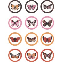 Kaisercraft Embellishment Pack - Tigerlilly Sticker Seals EM973