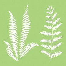 "Kaisercraft Ferns 6""x6"" Stencil Template IT483"