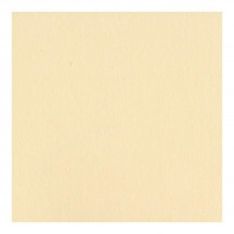 "Bazzill Basics Smoothies Pigment 12""x12"" Smooth Cardstock Bulk Pack"