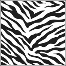 The Crafters Workshop 12x12 Template - Zebra Print