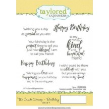 Taylored Expressions The Inside Scoop Birthday Cling Rubber Stamp Set TEMS158
