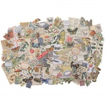 Tim Holtz Idea-ology Field Notes Snippets Die Cut Ephemera Pack TH94049